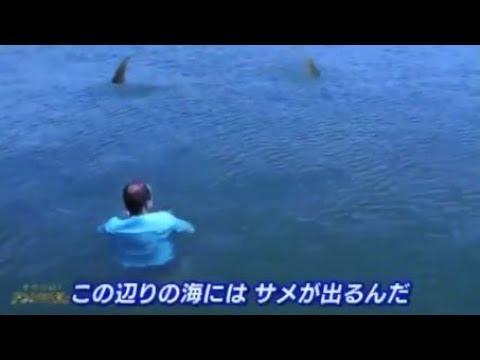 奇跡体験!アンビリバボー 死の恐怖!サメがいる大海原で地獄の漂流 彼の運命は・・・! - YouTube