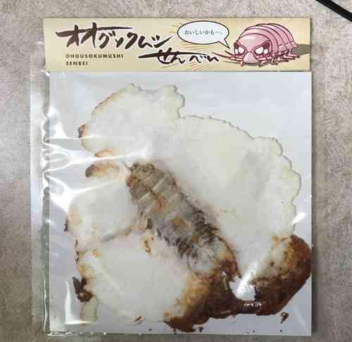 【閲覧注意】オオグソクムシをまるごと一匹プレスした「そのまんまオオグソクムシせんべい」新発売