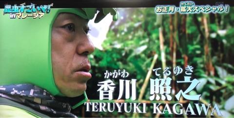 香川照之、Eテレ昆虫番組の第6弾 テーマはクマバチ「奥が深い」
