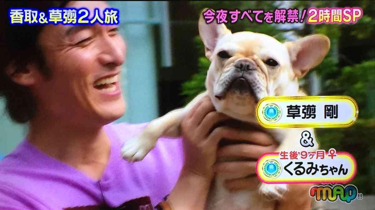 草なぎ剛:愛犬クルミちゃんがCMデビュー 竹内結子と共演で愛くるしい姿を披露