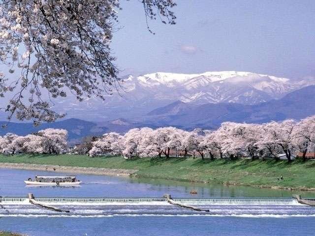 【老害】大河原の一目千本桜に向かう満員の東北本線で衝撃的な行為が・・・ : はちま起稿