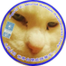 "nyanko on Twitter: ""一枚目:番組制作の一スタッフ、山田晃。二枚目:たかじん氏死後半年(2014年)。後妻から遺品の炊飯器をもらう。(たかじん氏実娘、実母はなにももらえず)三枚目:たかじんさん死後2か月で一緒に食事。四枚目:2017年、DHCテレビ社長浜田さんが追放され、山田が社長。#たかじん #殉愛 #百田尚樹… https://t.co/amu8N5StDl"""