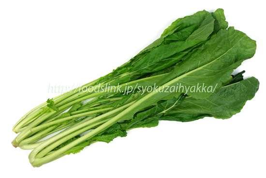 野沢菜/のざわな:旬の野菜百科