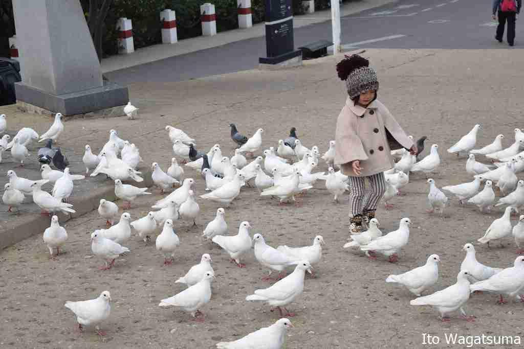 一人っ子政策廃止でも中国が少子化を止められそうにない理由 | ハーバービジネスオンライン