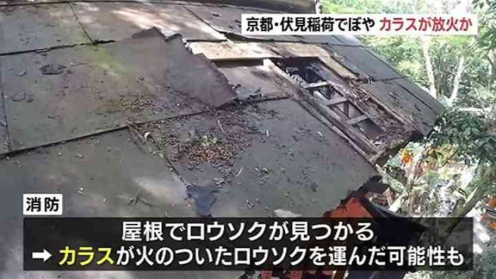 カラスが放火か、京都・伏見稲荷大社 ほこらの屋根燃える