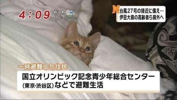 【実況・感想】テレビ史を揺るがせた100の重大ニュース