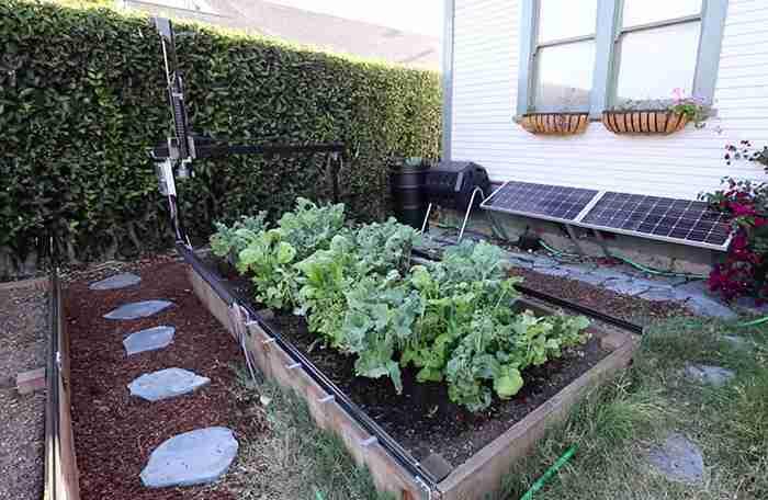 野菜を育てたい!