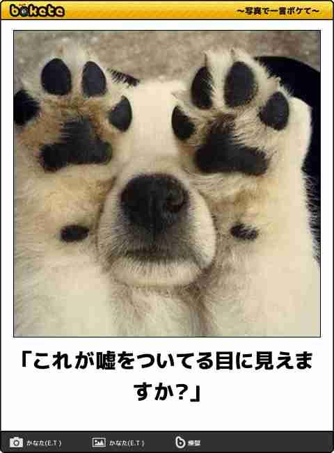 辻希美 長男の保護者会委員に「やるっきゃなぁーい」 カラコンも微調整
