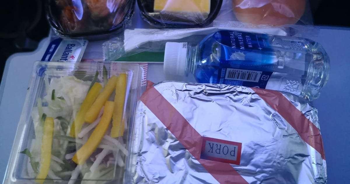 アメリカン航空の機内食で出る『カツ丼』が激ヤバ! 日本人がビビる味つけとは – しらべぇ | 気になるアレを大調査ニュース!