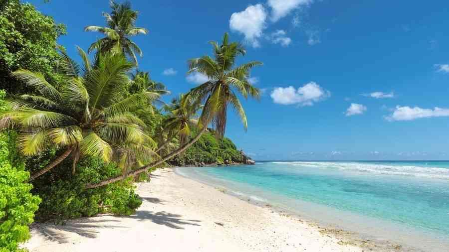 「冒険したかった」12歳少年、親と口論して1人バリ島へ 豪州