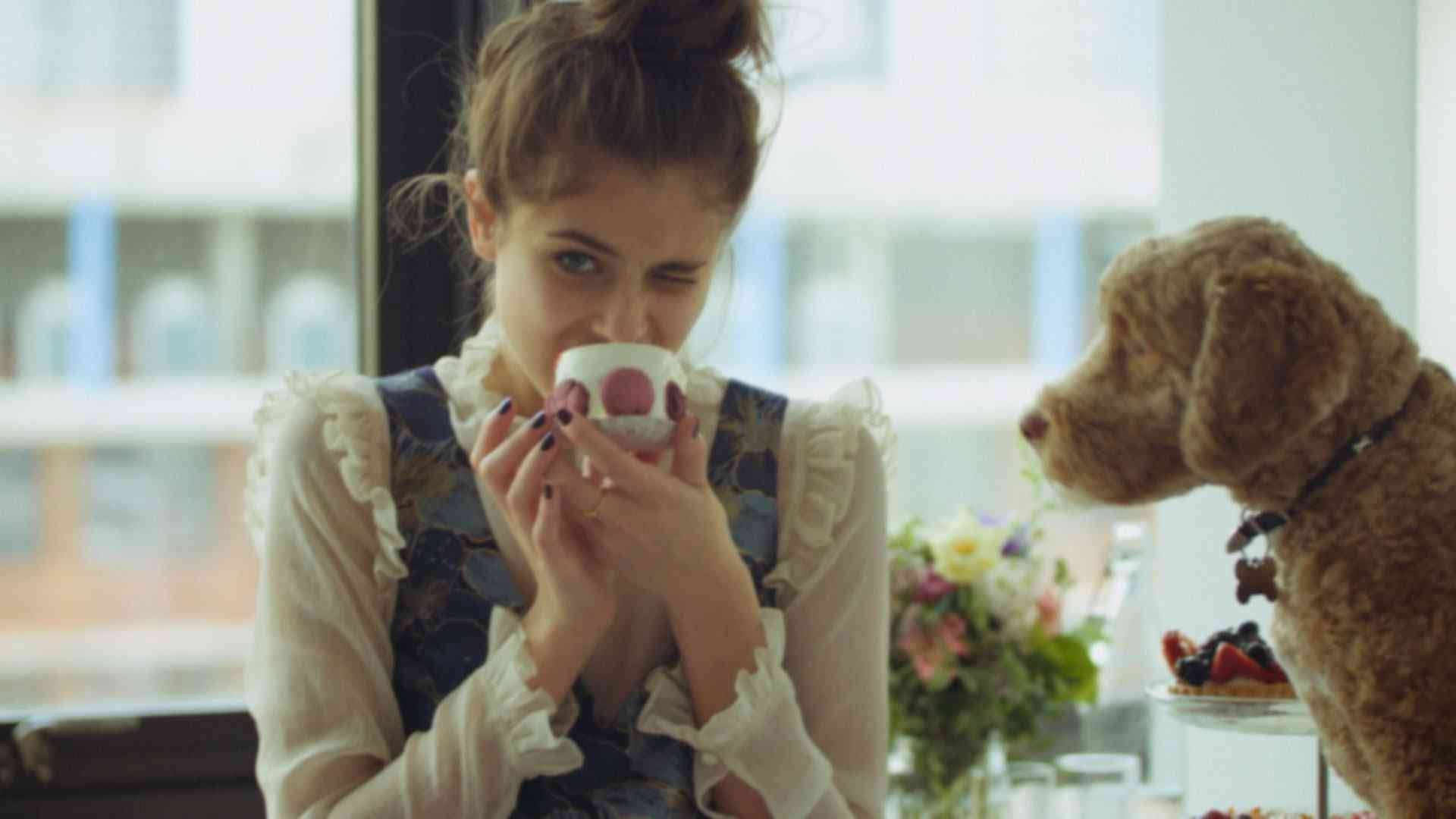 AW16 | A day in the life of Topshop campaign girl Taylor Hill and her dog Tate - YouTube
