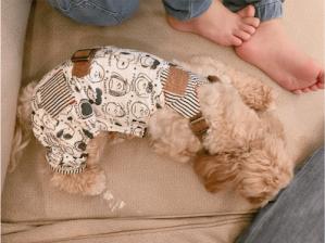 辻希美、愛犬クックのブログ頻発に「子犬のモカはどうしたの?」と疑問の声が殺到(1ページ目) - デイリーニュースオンライン