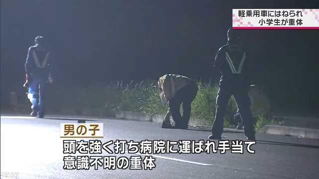 犬の散歩中はねられ 小学生重体 NHK 茨城県のニュース