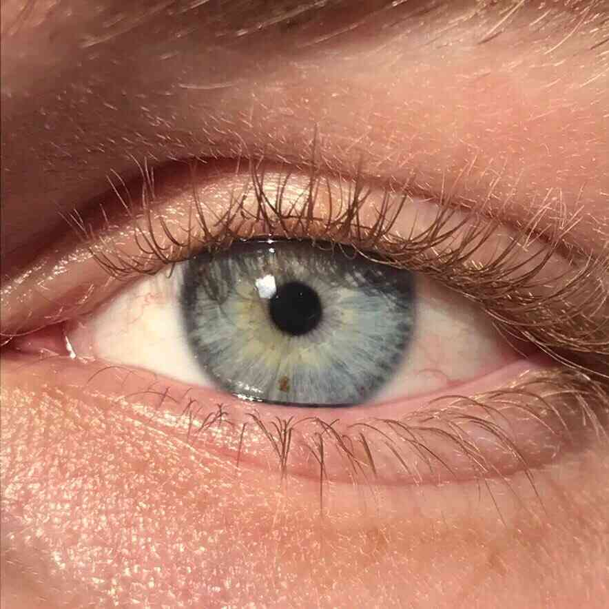 Eye color - Wikipedia