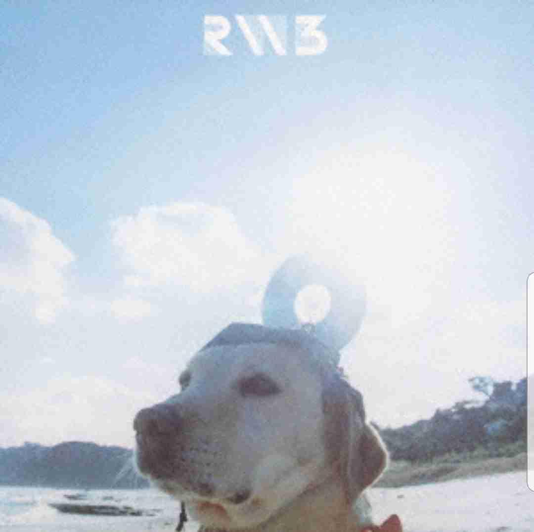 RADWIMPSで好きな曲ベスト3