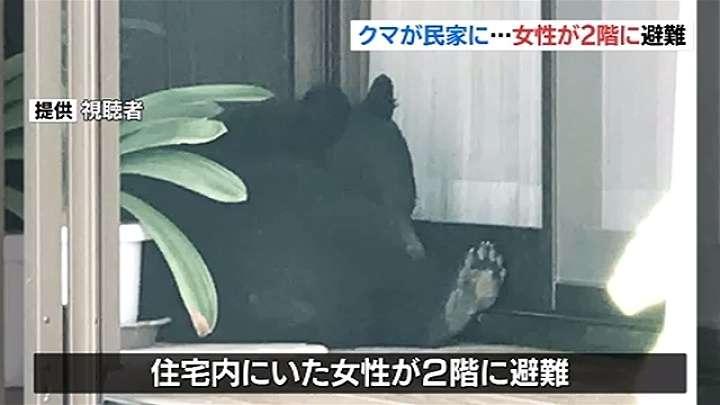 民家にクマが逃げ込む、女性が2階に避難 TBS NEWS
