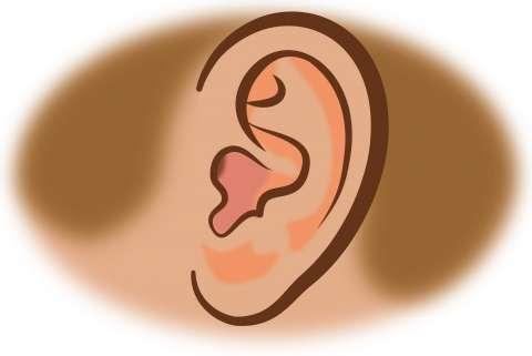 【微閲覧注意】左耳を失った米女性兵士、前腕で育てた耳の移植手術に成功
