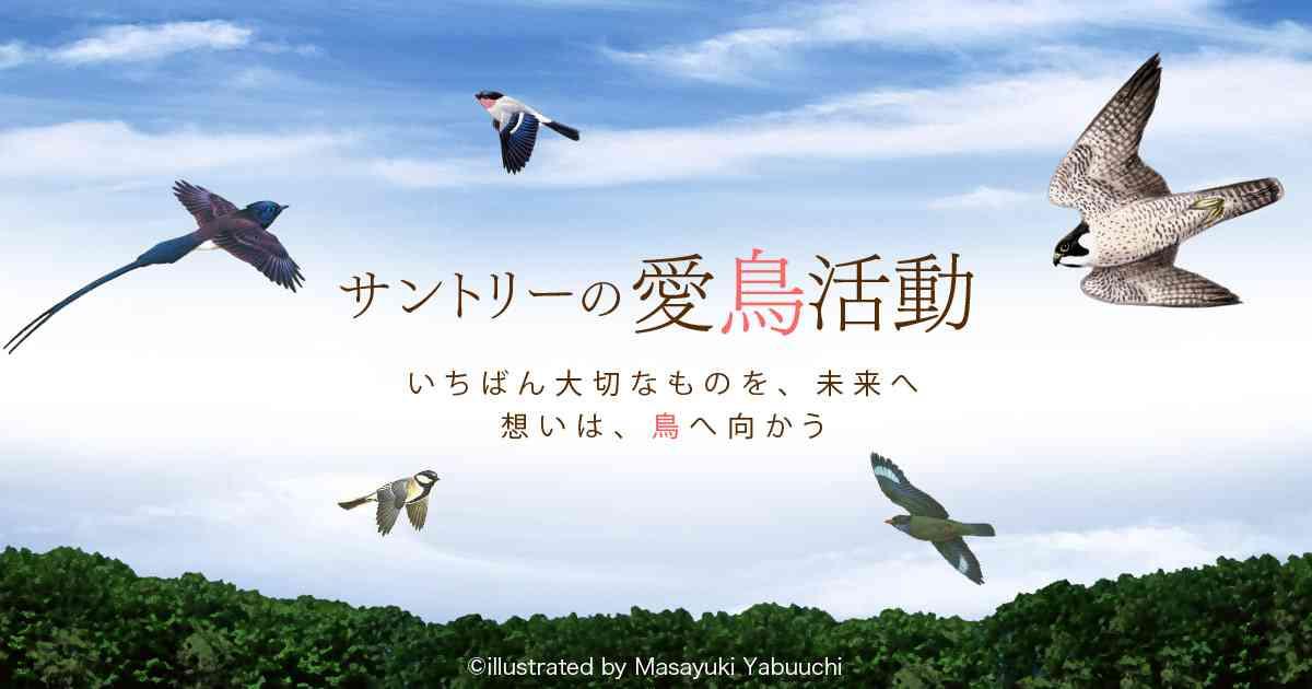 日本の鳥百科|サントリーの愛鳥活動