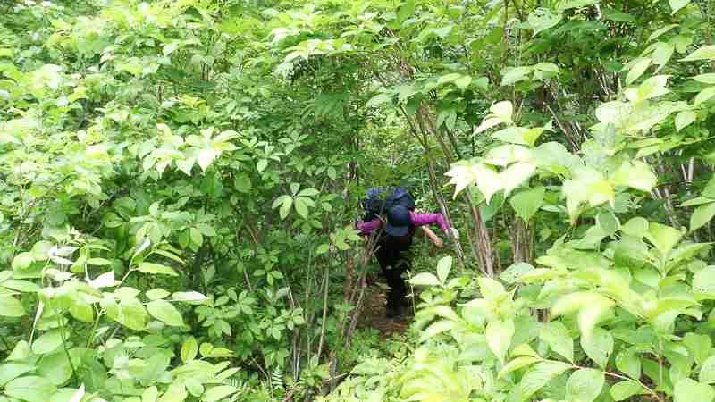 登山の親子遭難、県警、実は当初説明より半日早く認知