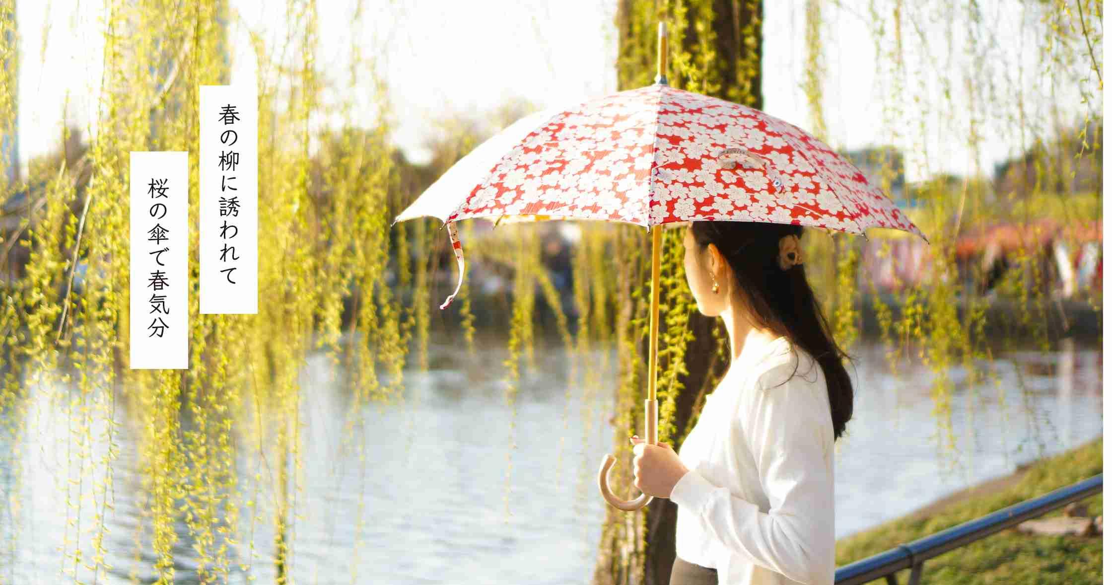 傘一筋87年 日本橋の傘・小宮商店