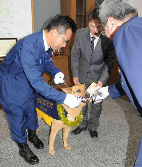 男性が行方不明、警察犬が捜索 20分後に倒れた男性発見、警察犬が寄り添い温める 大宮署がおもちゃ贈呈