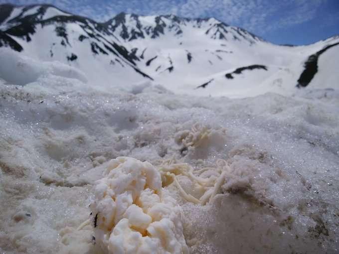 立山の雪の中にゴミを埋めていく輩がいるという残念すぎる画像がこちら「これ酷すぎて笑えない」