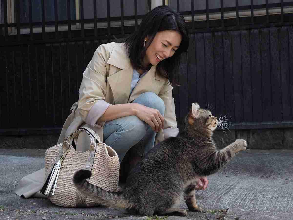 柴咲コウ、3年ぶり映画出演でヒロイン決定<ねことじいちゃん>