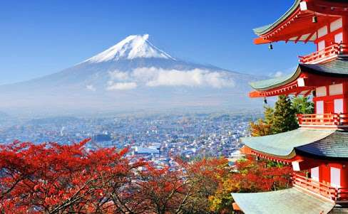 世界に誇れる日本発祥のもの
