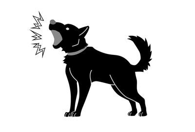 犬にバカにされやすい人の特徴4つ