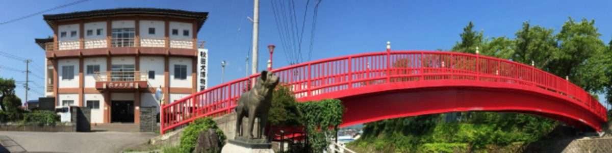 公益社団法人秋田犬保存会 – 秋田犬発祥の地、秋田県大館市に本部を構える