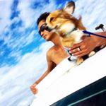 Shinobu_miyaraさん(@shinobu_miyara) • Instagram写真と動画