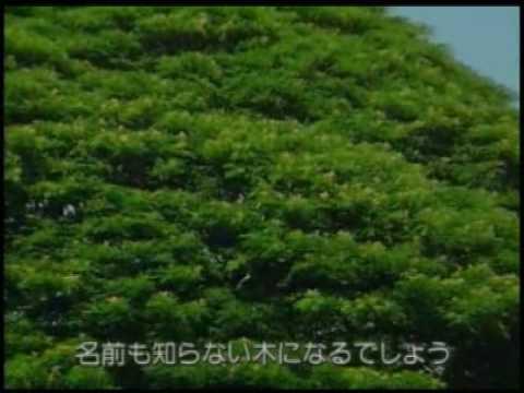 日立製作所CM 「日立の樹」全集 - YouTube