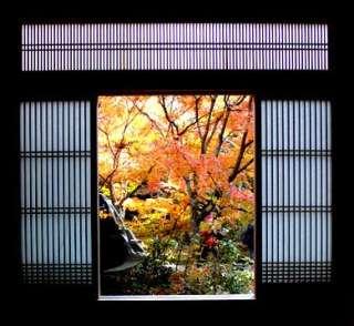 何度か京都へ行っている人への観光案内