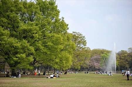 東京に住んでる方が選ぶ住みやすい街