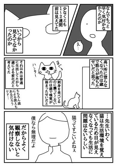 飼い主「もっと早く気付けていれば…」 失明した愛猫の実話漫画に「たくさんの人に知ってほしい」の声上がる