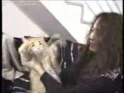 X JAPANメンバーインタビュー(家紹介)FILMGIG - YouTube