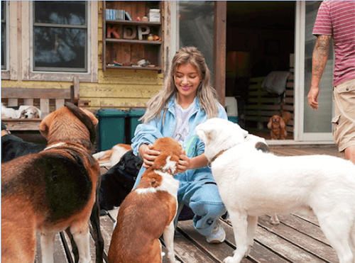 ローラ、「行動力を尊敬する」犬の保健所で里親の呼びかけに称賛の声