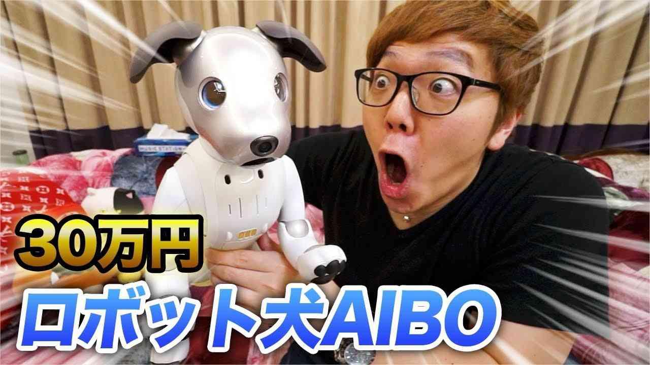 【30万円】我が家に犬がやってきた!【AIBO】 - YouTube