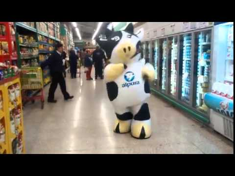Dancing Cow in Mexico - YouTube