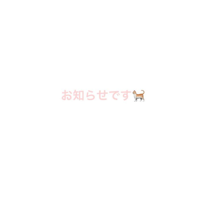 """AKEMI.D on Instagram: """"6月8日に新しいアカウントを 作ることになりました! そのアカウントには 今施設にいる猫ちゃんを 少しずつ載せていき、 里親さんをみつける為の アカウントです"""