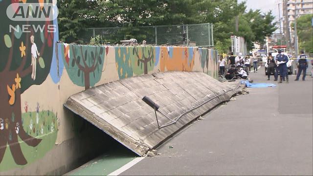 ブロック塀倒壊で女児死亡 専門家が危険性指摘