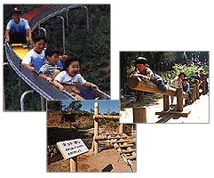 歩崎森林公園|かすみがうら市公式ホームページ