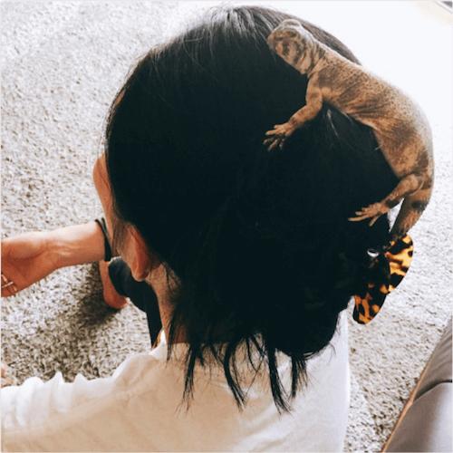 【爬虫類注意】安藤美姫、「新しい家族」と過ごすシュールな休日の様子にネットが騒然