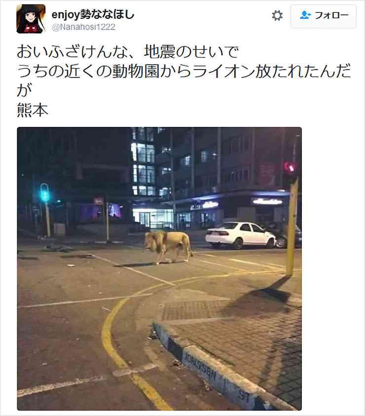 熊本地震「動物園からライオンが放たれた」 投稿の男性、不起訴処分