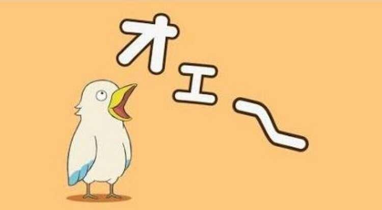 木下優樹菜&藤本敏史