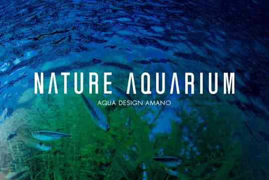IAPLC2017 TOP27 | ADA - NATURE AQUARIUM