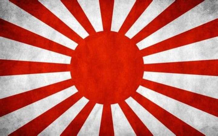韓国教授、日本のW杯初戦に「旭日旗」登場せず一安心|レコードチャイナ