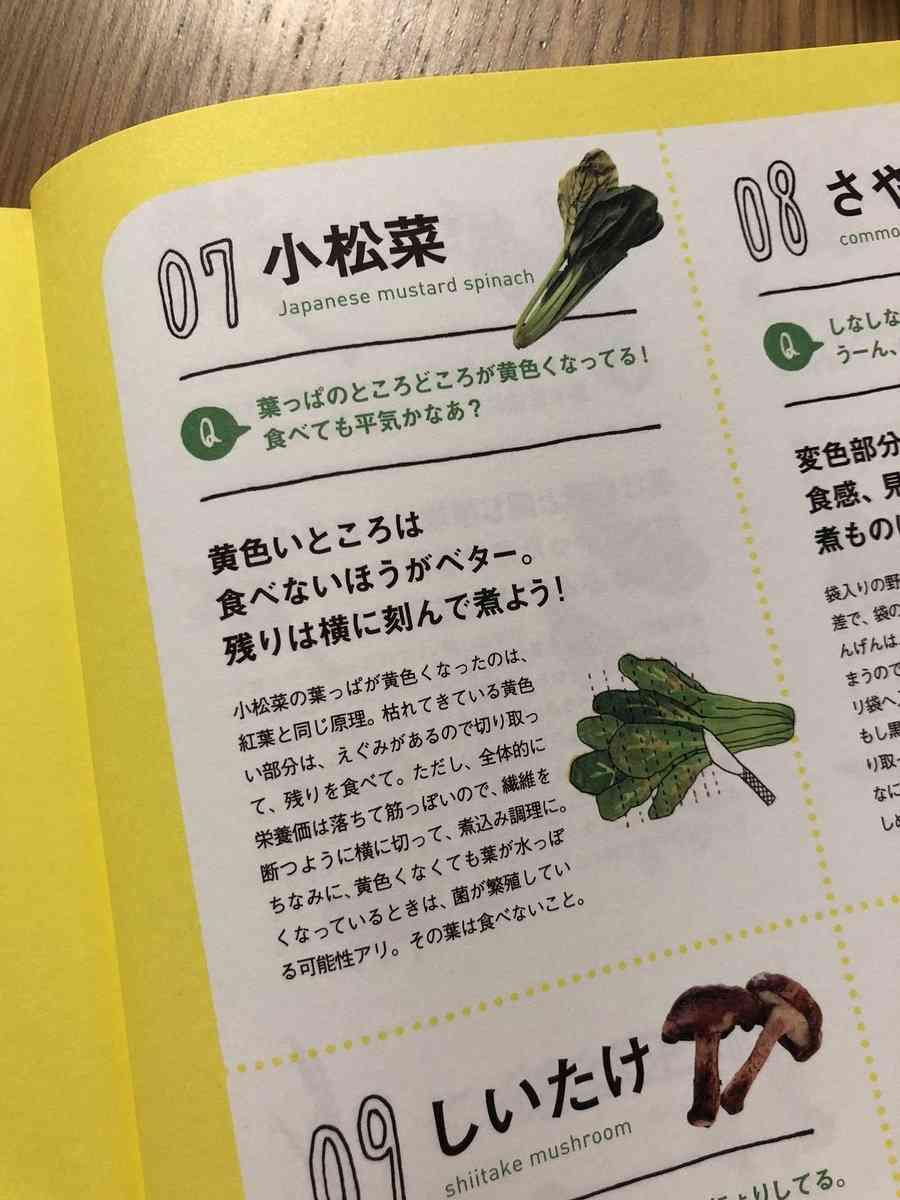 """自炊する人必見 """"くさりかけ野菜事典""""がズボラな人にぴったりで素晴らしすぎる「こういうのが欲しかった」"""