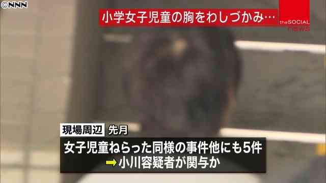 小川勝也参院議員の長男、保釈中にまた逮捕 強制わいせつの疑いで