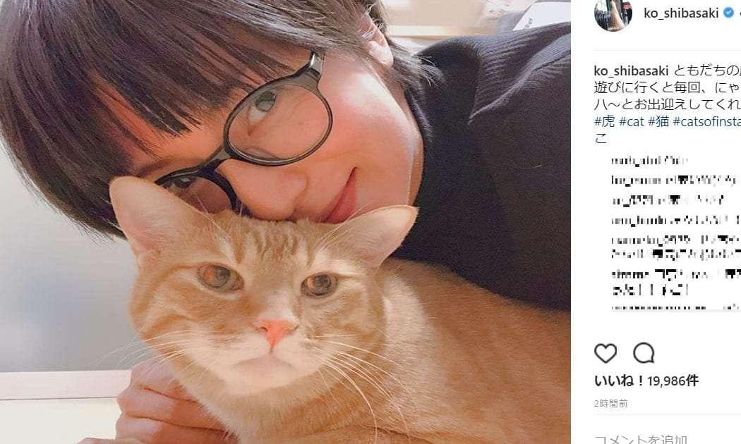 柴咲コウ、メガネ姿で猫と2ショット 「ニャンともかわいい」と絶賛 – しらべぇ   気になるアレを大調査ニュース!